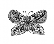 Coloriage adulte papillon zentangle celine