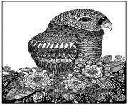 adulte zentangle oiseau sabrina  dessin à colorier