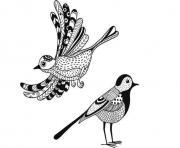anti stress animaux oiseaux dessin à colorier