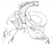 Coloriage dragon 171