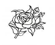 rose fleur dessin à colorier