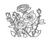 jardin de fleurs dessin à colorier