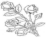 fleur adulte dessin à colorier