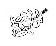 Coloriage fleur rose simple et facile dessin - Coloriage hawaienne ...