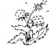 fleur montagne dessin à colorier