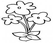 fleurs rose facile 111 dessin à colorier