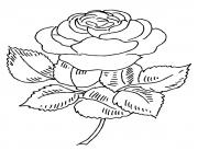 Coloriage roses 130