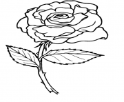 Coloriage roses 3
