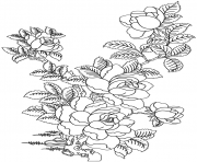 Coloriage roses 60
