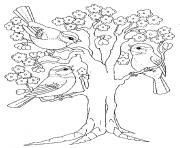 arbre printemps maternelle dessin à colorier