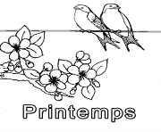 Coloriage printemps simple oiseaux