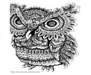 Coloriage adulte animaux hibou gros yeux