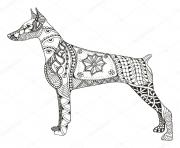 dog doberman pinscher zentangle adulte animaux dessin à colorier