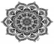 Coloriage mandala complexe adulte fleurs art therapie