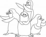 pingouin de madagascar dessin à colorier