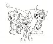 pat patrouille avec Everest Marcus dessin à colorier