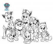 toute lequipe de pat patrouille dessin min dessin à colorier