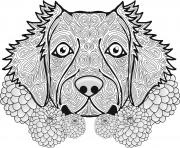 Coloriage adulte chien dog animal