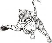 Coloriage tigre animal zoo adulte