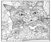 Coloriage chat maine coon adulte animaux