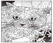 Coloriage chat british shorthair adulte animaux