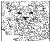 Coloriage chat lynx adulte animaux
