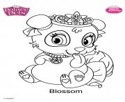 palace pets blossom disney dessin à colorier