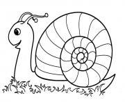 escargot maternelle dans la nature dessin à colorier