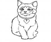 dessin petit chaton dessin à colorier