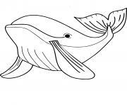 Coloriage baleine a bosse dessin