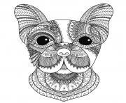 adulte tete de chien bimdeedee dessin à colorier