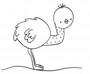 kawaii emu dessin à colorier
