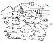 lapins en compagnie du chien dessin à colorier