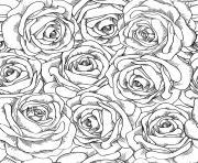 fleurs adulte roses dessin à colorier