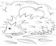 Coloriage hedgehog with apple automne