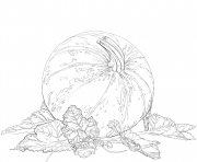 Coloriage pumpkin and feuilles automne