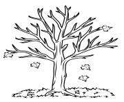 automne tree dessin à colorier
