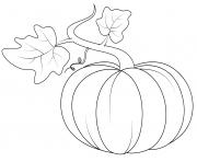 pumpkin with feuilles automne dessin à colorier