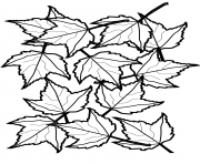 automne maple feuilles fall dessin à colorier
