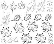 dessin automne feuilles dessin à colorier