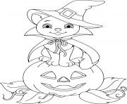 chat sur une citrouille dessin à colorier