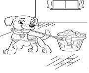pat patrouille chien de compagnons pour lindependance dessin à colorier