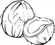 noix de coco dessin à colorier