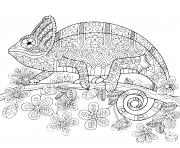 cameleon mandala dessin à colorier