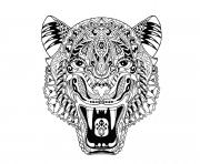 Coloriage tigre adulte animal