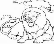 lion en afrique dessin à colorier
