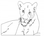 Coloriage lioness