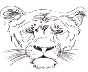Coloriage lioness head