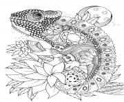 adulte animaux cameleon orne de bijoux dessin à colorier