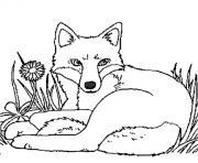renard tranquille dans la foret dessin à colorier